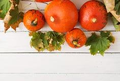Zucche e foglie di autunno su un fondo di legno bianco Fotografia Stock
