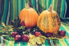 Zucche e mela fra la foglia di caduta Fotografia Stock Libera da Diritti