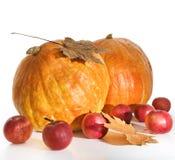 Zucche e mele rosse Fotografie Stock