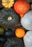 Zucche e zucca Fotografie Stock