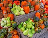 Zucche e zucche al mercato Immagini Stock