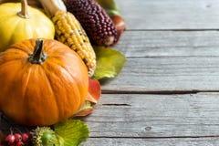Zucche, ghiande, foglie e bacche Immagine Stock Libera da Diritti