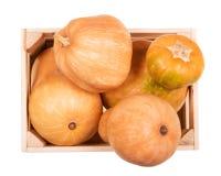 Zucche mature delle forme differenti in scatola di legno isolata su bianco Fotografia Stock Libera da Diritti