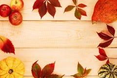 Zucche, mele e foglie fotografie stock
