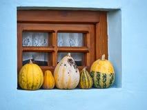 Zucche nella finestra Fotografia Stock Libera da Diritti