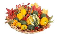 Zucche ornamentali e decorazioni autunnali Fotografia Stock