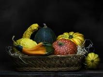 Zucche ornamentali, zucche, merce nel carrello delle zucche Ancora vita 1 Chiaroscuro, pittura barrocco della luce di stile fotografie stock