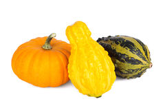 Zucche ornamentali variopinte e zucche isolate su bianco Fotografie Stock