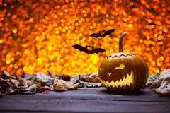 Zucche per Halloween ed i pipistrelli Immagini Stock