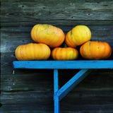 Zucche su un banco blu Fotografie Stock Libere da Diritti
