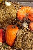 Zucche sulle balle di fieno a tempo di raccolto Immagini Stock Libere da Diritti