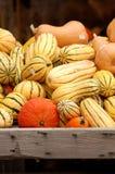 Zucche variopinte accatastate su in una cassa di legno Fotografie Stock
