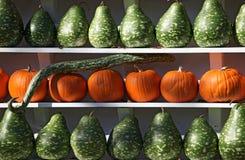 Zucche verdi ed arancio su un accantonamento fotografie stock