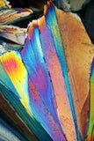 Zucchero alla luce polarizzata Fotografie Stock Libere da Diritti