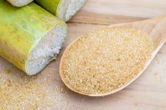 Zucchero bruno e canna da zucchero Fotografia Stock