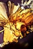 Zucchero cristallizzato, heated Immagini Stock