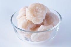 Zucchero della noce di cocco Fotografie Stock Libere da Diritti