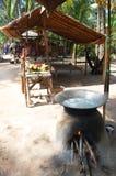 Zucchero della noce di cocco fatto dalla palma di Palmira dell'asiatico, palma di Toddy, palma da zucchero immagine stock libera da diritti