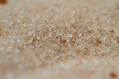 Zucchero di cottura con il macro dettaglio della cannella fotografia stock