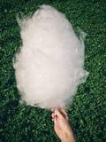 Zucchero filato Fotografie Stock Libere da Diritti