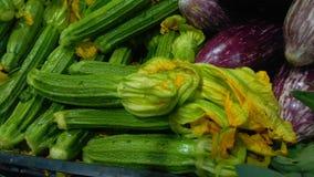 Zucchina con i fiori Immagini Stock Libere da Diritti