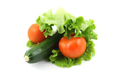 Zucchini и томат Стоковое фото RF