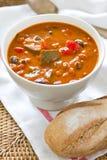 zucchini супа minestrone фасоли Стоковое фото RF