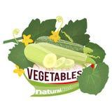 zucchini Stock Fotografie
