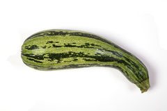 Zucchini. On white with soft shadow Royalty Free Stock Photography