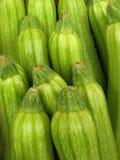 Zucchini Стоковые Фотографии RF