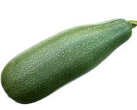 Zucchini. Fotos de Stock Royalty Free