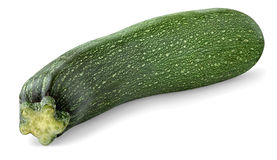 Zucchini Imagem de Stock