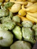 zucchini Zdjęcia Stock