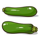 Zucchini Fotografie Stock Libere da Diritti