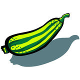 zucchini royalty ilustracja