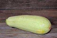 zucchini Fotos de archivo libres de regalías