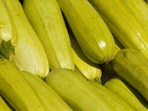 Zucchini Lizenzfreie Stockfotos
