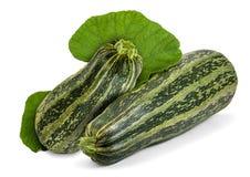 zucchini Imagen de archivo