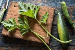 zucchini Zdjęcie Stock