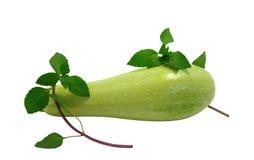 Zucchini with basil Stock Photo