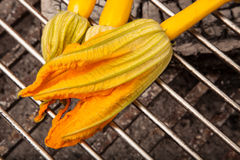 Zucchini blossom on grill Royalty Free Stock Image