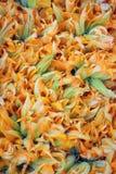 Zucchini Blossoms. Zucchini or courgette squash blossoms stock images