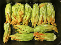 Zucchini blossoms stuffed Royalty Free Stock Photo