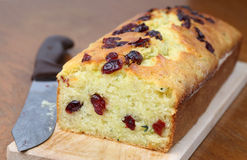 Zucchini bread with cranberries Stock Image