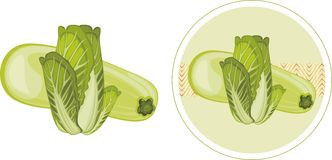 Zucchini and cabbage. Label for design Royalty Free Stock Photo