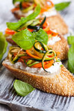 Zucchini,carrot and cheese bruschetta Royalty Free Stock Photography