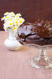 Zucchini chocolate cake with chocolate glaze Stock Photos
