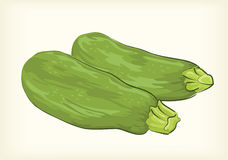 Zucchini  and cliparts Stock Photography