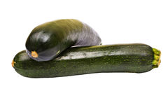 Zucchini courgette Stock Photography