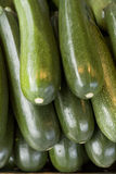 Zucchini/courgettes Imagens de Stock Royalty Free